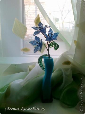Очень уж мне понравились цветы из бисера,  решила попробовать, вот что получилось. фото 2