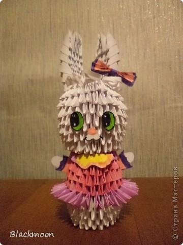 Подружка для зайца фото 1