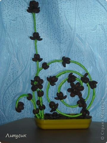 Мне приснился необычный цветок... фото 8