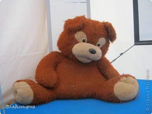 """В рамках фестивалю """"Белые ночи"""" ( о нём можно посмотреть здесь http://stranamasterov.ru/node/376932)  в нашем городе прошёл  и МедведDay. Мини-фестиваль, посвященный игрушечному медвежонку. В его рамках было очень много интересного : и шествие по гроду, и мастер-классы, и лечебница для плюшевых игрушек. Думаю, что такое внимание   к медведю объясняется не только популярностью данной игрушки, но и тем, что когда-то наш край считался медвежьим углом,  и на гкербе нашего города ещё  с позапрошлого века изображён медведь. Я расскажу лишь о самой маленькой  части  праздника, посвященного игрушечному косолапому - павильоне МедведDay на нашей эспланаде.  Лозунг """"Каждому медведю - отдельную берлогу"""" можно назвать девизом выставки. Медведей здесь несколько, но у каждого из них - своя берлога.  фото 9"""