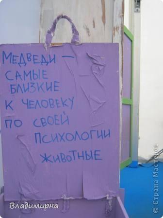 """В рамках фестивалю """"Белые ночи"""" ( о нём можно посмотреть здесь http://stranamasterov.ru/node/376932)  в нашем городе прошёл  и МедведDay. Мини-фестиваль, посвященный игрушечному медвежонку. В его рамках было очень много интересного : и шествие по гроду, и мастер-классы, и лечебница для плюшевых игрушек. Думаю, что такое внимание   к медведю объясняется не только популярностью данной игрушки, но и тем, что когда-то наш край считался медвежьим углом,  и на гкербе нашего города ещё  с позапрошлого века изображён медведь. Я расскажу лишь о самой маленькой  части  праздника, посвященного игрушечному косолапому - павильоне МедведDay на нашей эспланаде.  Лозунг """"Каждому медведю - отдельную берлогу"""" можно назвать девизом выставки. Медведей здесь несколько, но у каждого из них - своя берлога.  фото 13"""