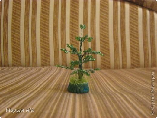Ёлка или зелёное деревце.