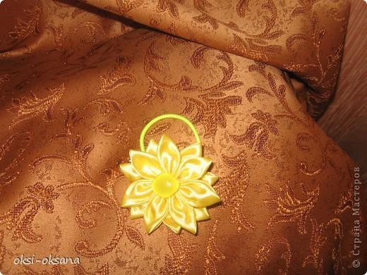 цветок на полоску. фото 3