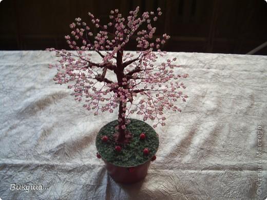 Дерево Сакура из бисера. фото 1