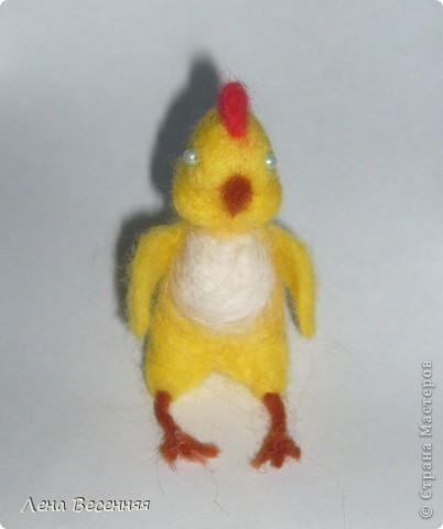 Доброго времени суток всем!!! Наконец-то сваляла цыплёнка! Вот такой он получился у меня.  Примером служил подаренный мне цыплёнок.   Глаза решила сделать по бокам. Были только голубые бусинки. Сейчас  глаза покрашены в чёрный цвет. Лапы делала мокрым валянием. В общем, мне не очень то нравится, то, что получилось у меня.    фото 1