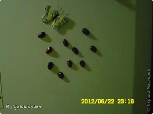 """Такие магниты на холодильник смастерили мы с кружковцами на 8 марта, были еще цветы из конфет, но их я засняла, жаль...  Магниты-божьи коровки  - из скорлупок от фисташек. Фисташки были с успехом съедены, скорлупки мы пустили в """"дело"""". Скорлупу протираем, отрезаем магнит (он легко режется ножом кухонным). Приклеили на клей титан. Покрасили лаком для ногтей, когда высох - головку, разделитель крылышек и точки посадили черным контуром, некоторые девочки прорисовали их черным маркером (кому контура не хватило). И вот они красуются на холодильнике..   фото 1"""