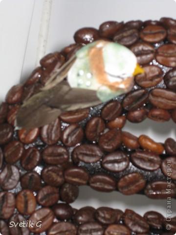 кофейный еврик фото 3