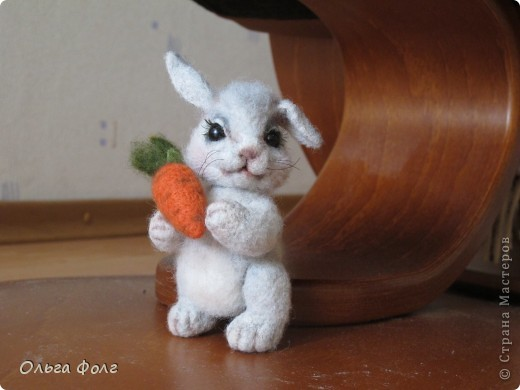 Заяц фото 4
