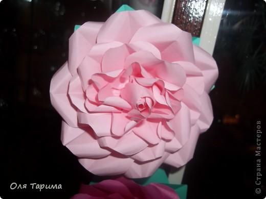 Новогодняя роза))) фото 3