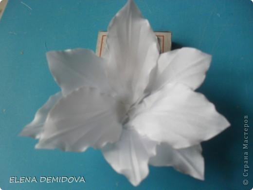 Для того, чтобы сделать лилию мне потребовались: фото 13