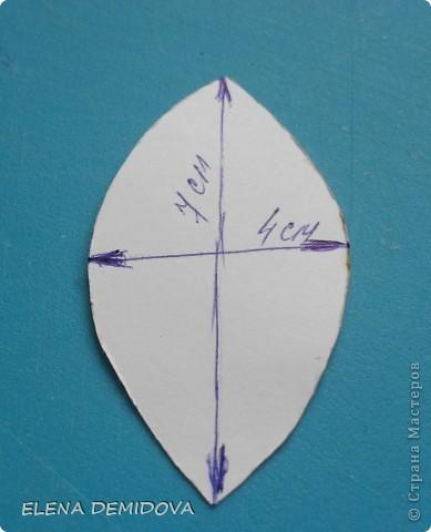 Для того, чтобы сделать лилию мне потребовались: фото 2
