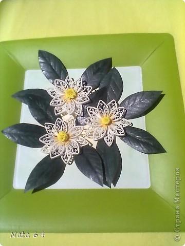 Лепесточки делала из бумаги для пастели, резала по 3 мм, сам цветок собирала на горячий клей. Листики тоже  из бумаги для пастели, делала прожилки и сверху покрыла лаком для ногтей. Рамка - это бумажная одноразовая тарелка.  фото 1
