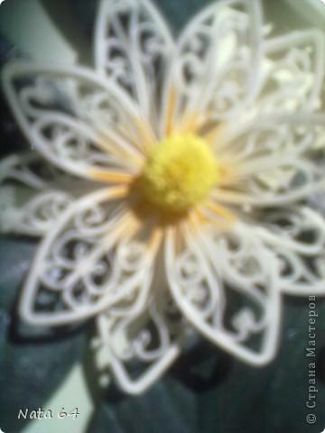 Лепесточки делала из бумаги для пастели, резала по 3 мм, сам цветок собирала на горячий клей. Листики тоже  из бумаги для пастели, делала прожилки и сверху покрыла лаком для ногтей. Рамка - это бумажная одноразовая тарелка.  фото 3