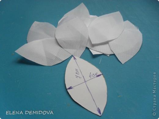 Для того, чтобы сделать лилию мне потребовались: фото 3