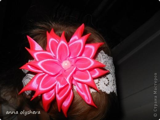 хризантемки для моих принцесс фото 1