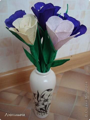 крокусы, проба пера))) фото 2