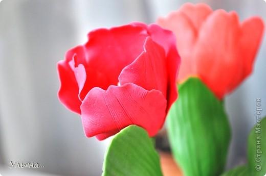 Тюльпаны из Thai clay фото 7