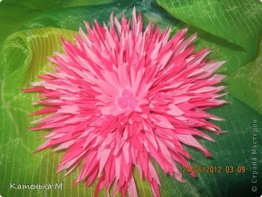 Новые цветочки из ткани фото 3