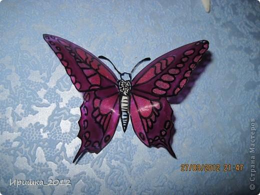 и еще раз на показ бабочки фото 2