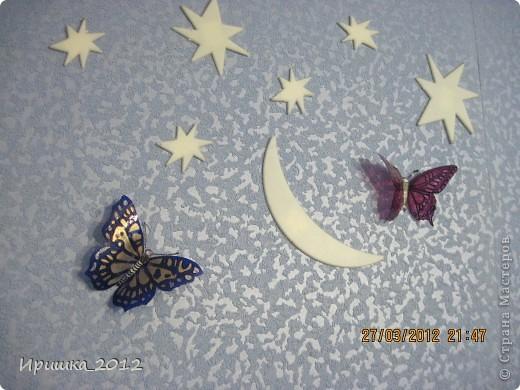 и еще раз на показ бабочки фото 8