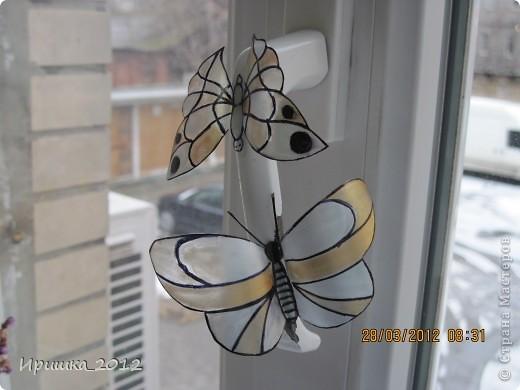 и еще раз на показ бабочки фото 3