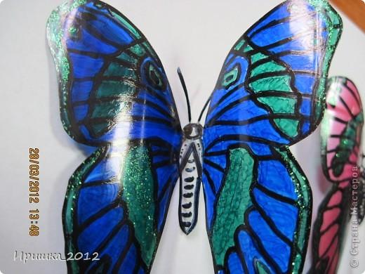 и еще раз на показ бабочки фото 5