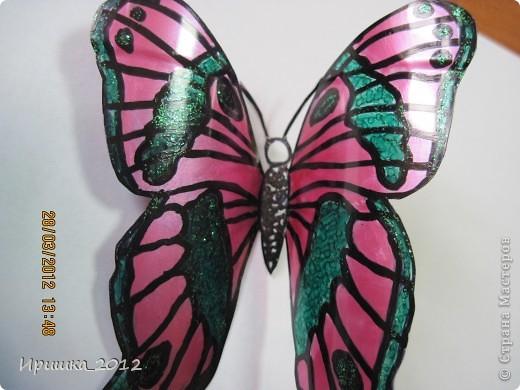 и еще раз на показ бабочки фото 6