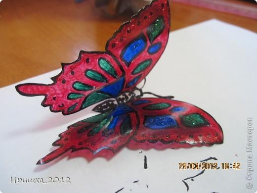 и еще раз на показ бабочки фото 7