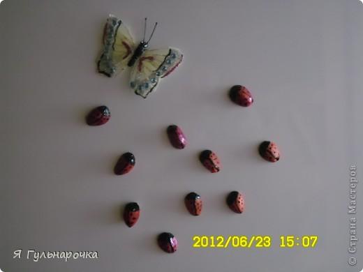 """Такие магниты на холодильник смастерили мы с кружковцами на 8 марта, были еще цветы из конфет, но их я засняла, жаль...  Магниты-божьи коровки  - из скорлупок от фисташек. Фисташки были с успехом съедены, скорлупки мы пустили в """"дело"""". Скорлупу протираем, отрезаем магнит (он легко режется ножом кухонным). Приклеили на клей титан. Покрасили лаком для ногтей, когда высох - головку, разделитель крылышек и точки посадили черным контуром, некоторые девочки прорисовали их черным маркером (кому контура не хватило). И вот они красуются на холодильнике..   фото 2"""
