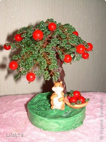 Яблонька фото 1