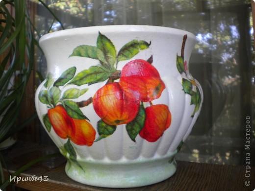 Еще один горшочек с яблочками. фото 2