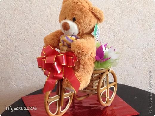 Мишка на велосипеде фото 2