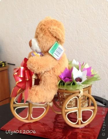 Мишка на велосипеде фото 4