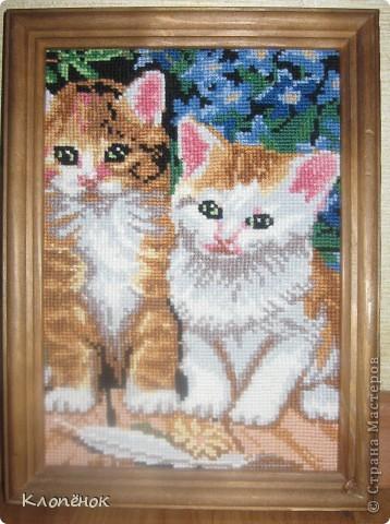 Это мои котятки)) Я их вышивала года 4 назад на день рождения маме. Без вспышки фото 2