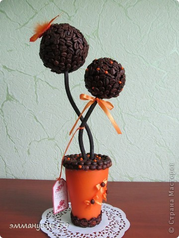 Мое очередное кофейное дерево. фото 1