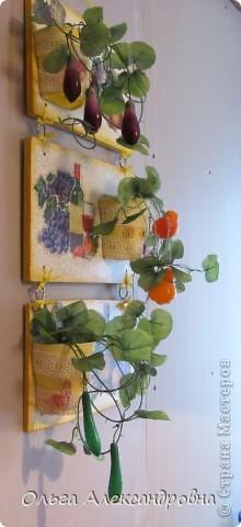 Очень понравилось панно Физалии http://stranamasterov.ru/node/357421?c=favorite  и решила тоже сделать что - то подобное на кухню на даче. Не обращайте внимания на фон, обои еще не наклеены, но куплены, бежевые с гроздьями винограда, поэтому и салфеточки выбирала под стать обоев.  фото 13