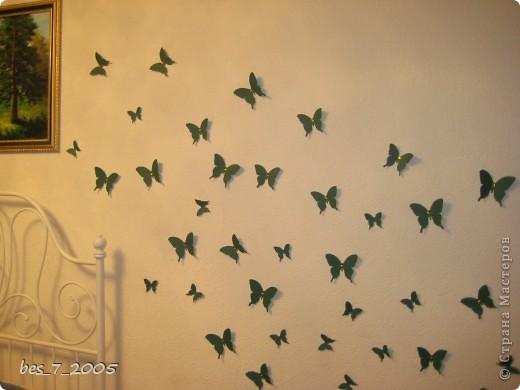 Бабочки на стене фото 1