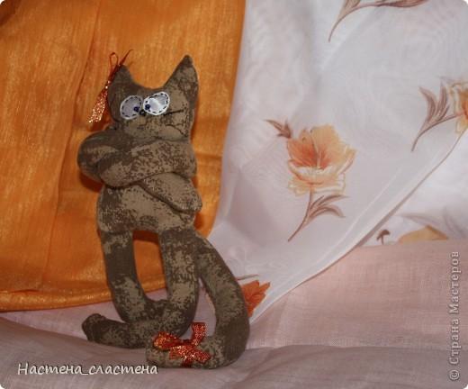 Всем привет! Я Мурка!!!  Я родилась на Анину котовасию http://stranamasterov.ru/node/381482?c=favusers  фото 2