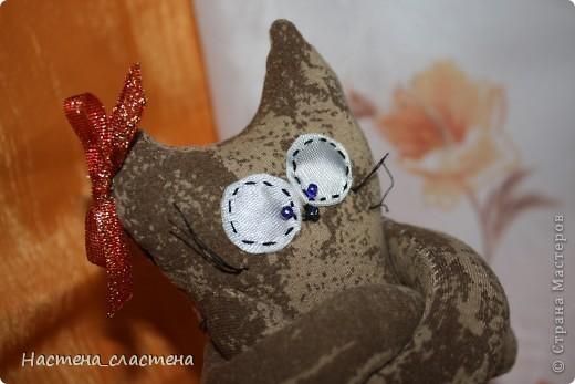 Всем привет! Я Мурка!!!  Я родилась на Анину котовасию http://stranamasterov.ru/node/381482?c=favusers  фото 7