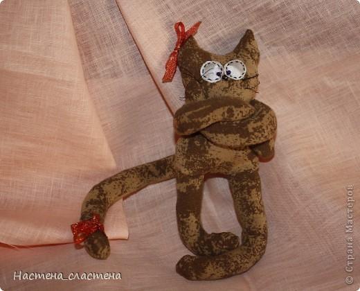 Всем привет! Я Мурка!!!  Я родилась на Анину котовасию http://stranamasterov.ru/node/381482?c=favusers  фото 5