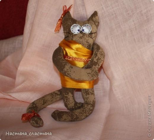 Всем привет! Я Мурка!!!  Я родилась на Анину котовасию http://stranamasterov.ru/node/381482?c=favusers  фото 6
