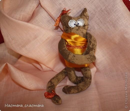 Всем привет! Я Мурка!!!  Я родилась на Анину котовасию http://stranamasterov.ru/node/381482?c=favusers  фото 8