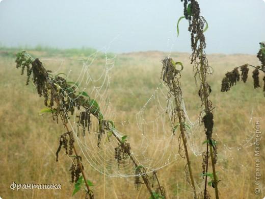 Перед грозой. фото 5