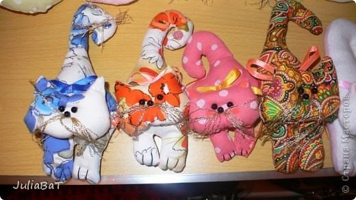 Котятки-игольницы фото 1