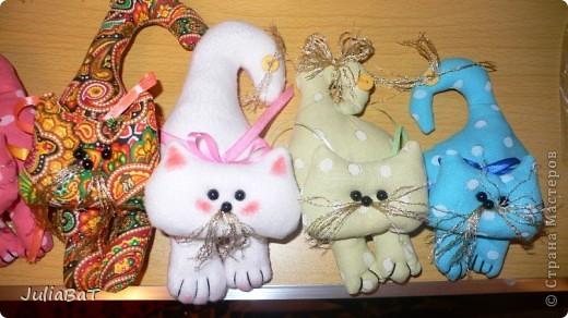 Котятки-игольницы фото 2