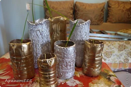 """Все началось с того, что я посадила зерна фиников-они все взашли и надо было раздать, желающим подругам,а т.к. финику надо длинный и небольшой горшок (еще и много горшков). Я решила сделать из бутылок: больший из под пепси, маленькие разные. Эти горшки, я просто покрасила в золотой цвет и термо пистолетом """"украсила"""". фото 6"""