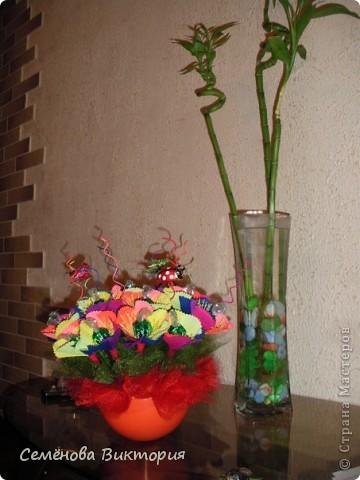 Цветик- семицветик! фото 1