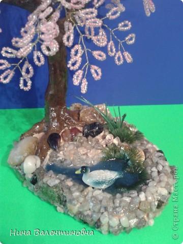 Сакура у воды. фото 3