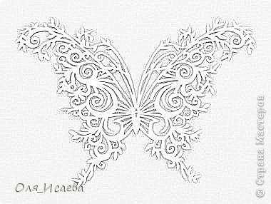Опять бабочки фото 9