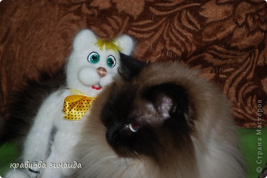 Привет,  я  Васька  да  я  блондин,  но  не  тупой !  фото 5